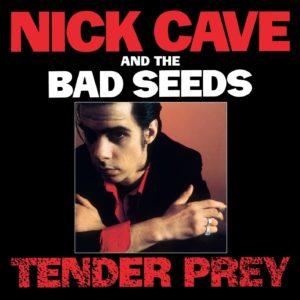 Nick-cave-tender-prey