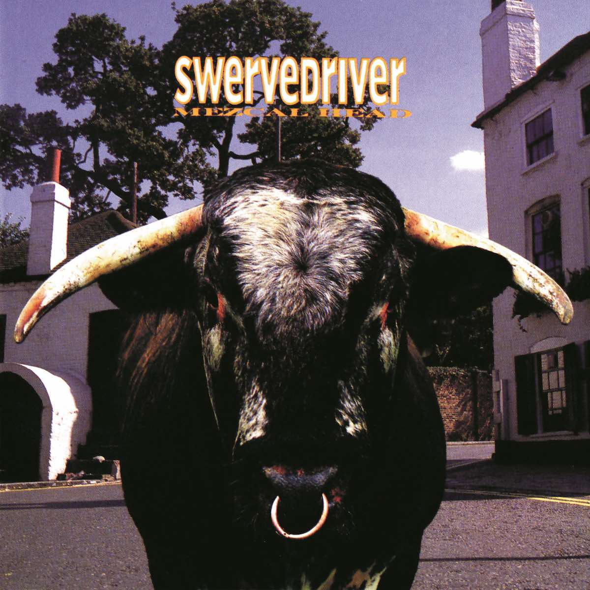 Swervedriver Mezcal Head review