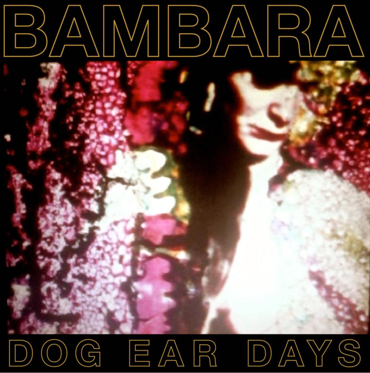 Bambara Dog Ear Days