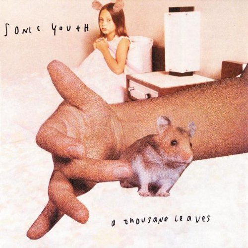 Sonic Youth albums rated A Thousand Leaves