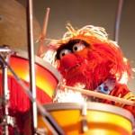 Treble's 50 favorite drummers