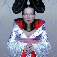 best winter albums Bjork - homogenic