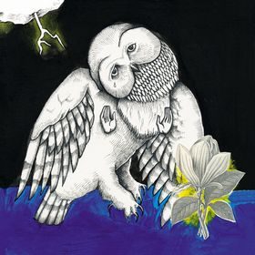 Songs:Ohia - Magnolia Electric Co.