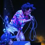 Solange FYF Fest 2013