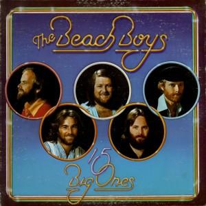 Beach Boys - 15 Big ones