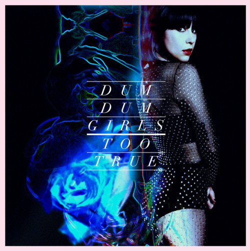 Dum Dum Girls - Too True review
