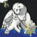 Songs Ohia - Magnolia Electric Co.