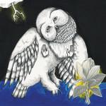 Songs Ohia - Magnolia Electric Co.