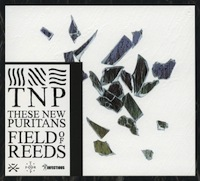 These New Puritans - Fields of Reeds