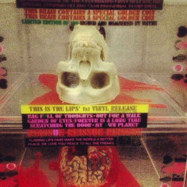Flaming Lips chocolate skull