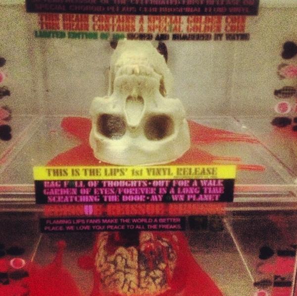 Flaming Lips chocolate skull