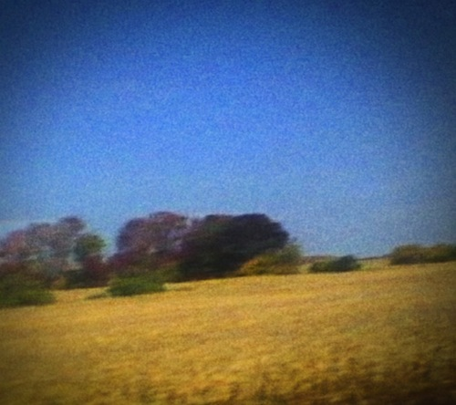 Sun Kil Moon Benji review