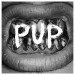 PUP Self titled