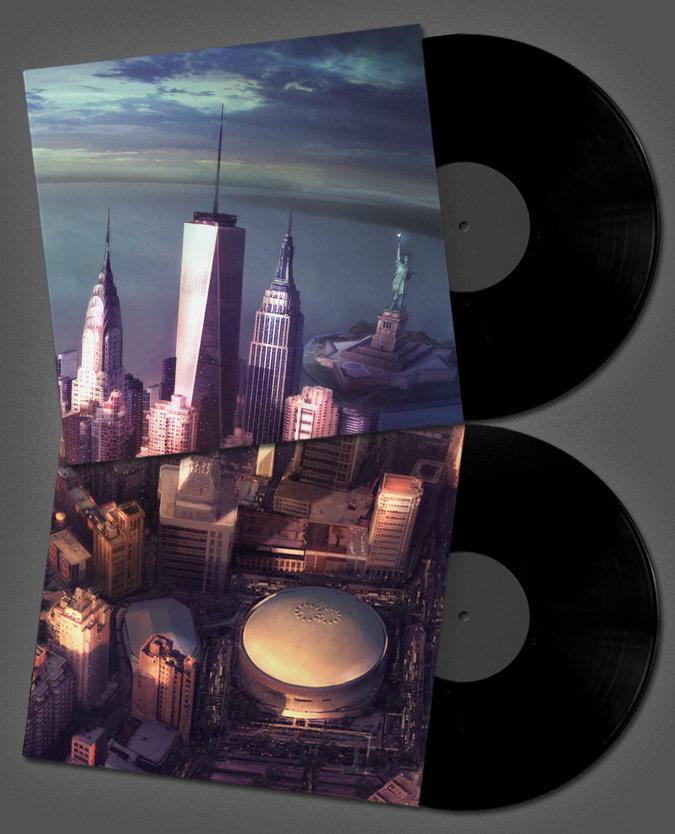 Foo Fighters vinyl
