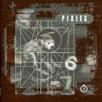 pixies doolittle essential 4ad tracks