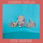 Screaming Females : Rose Mountain