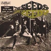 The Seeds essential garage rock