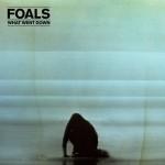 9-11-foals