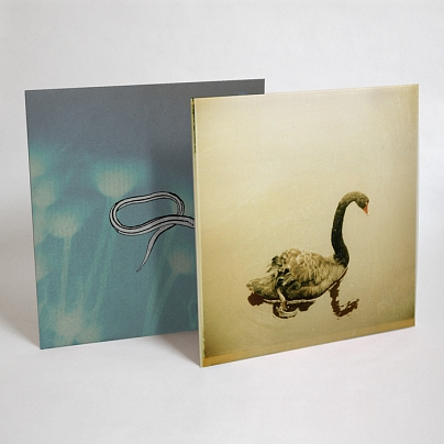 Crooked Fingers reissues