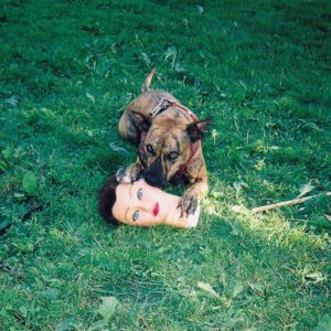 Joyce Manor Cody review
