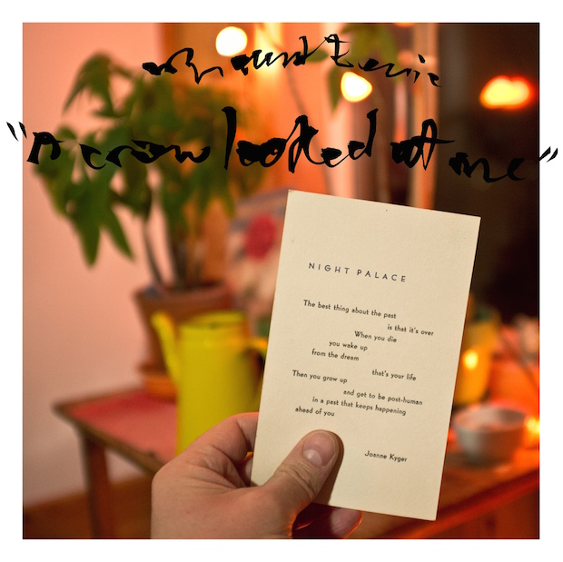 Mount Eerie new album A Crow Looked at Me