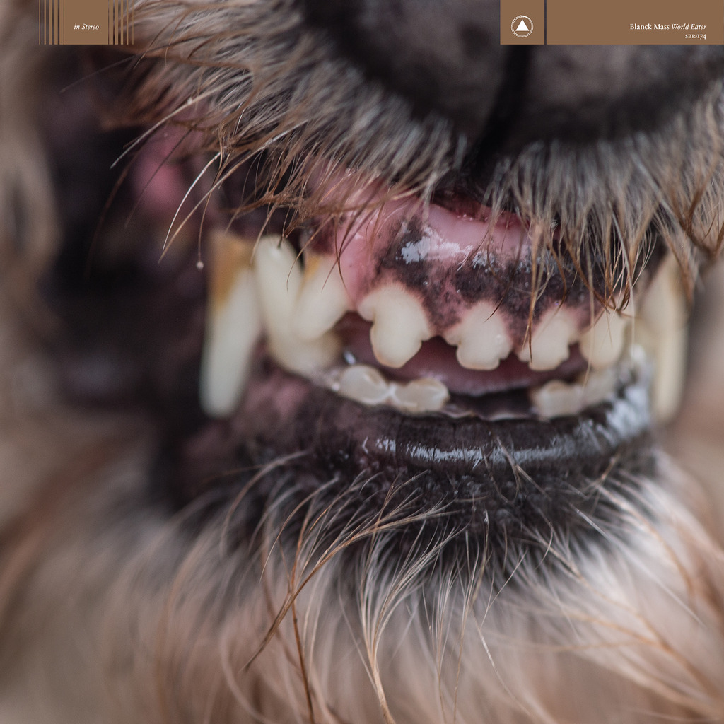 Image result for album art Blanck Mass: World Eater