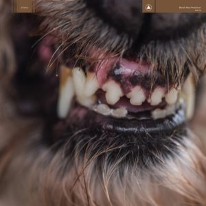 Blanck Mass World Eater review