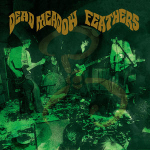best stoner rock albums Dead Meadow