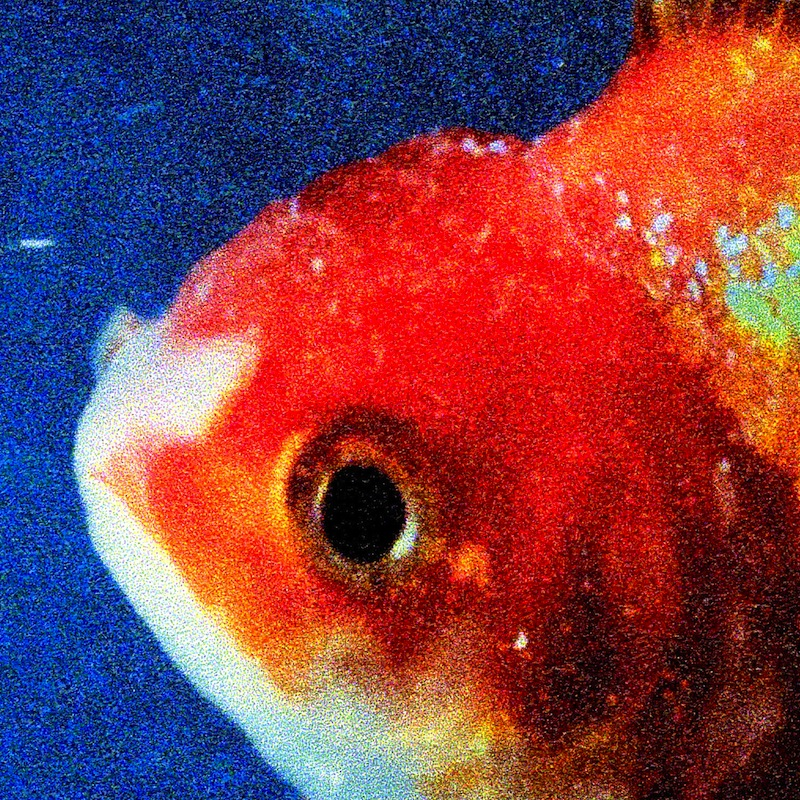 Vince Staples Big Fish Theory review