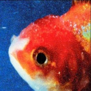 best albums of 2017 so far Vince Staples