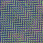 animal-collective-mpp