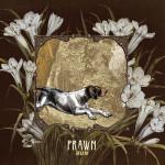 Prawn Run review