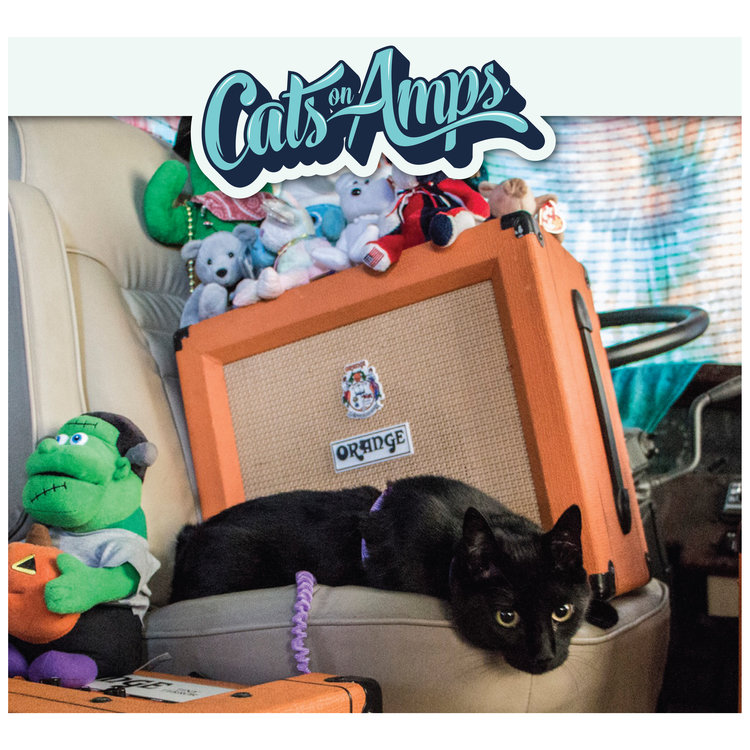 holiday gift guide 2017 CatsonAmps