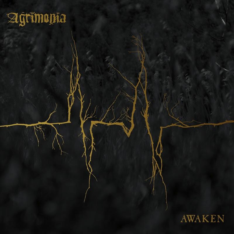 Agrimonia Awaken review Album of the Week
