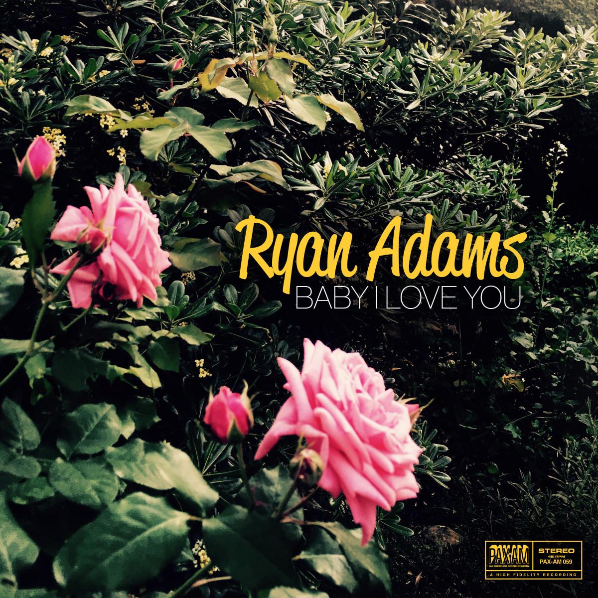 Ryan Adams Baby I Love You single