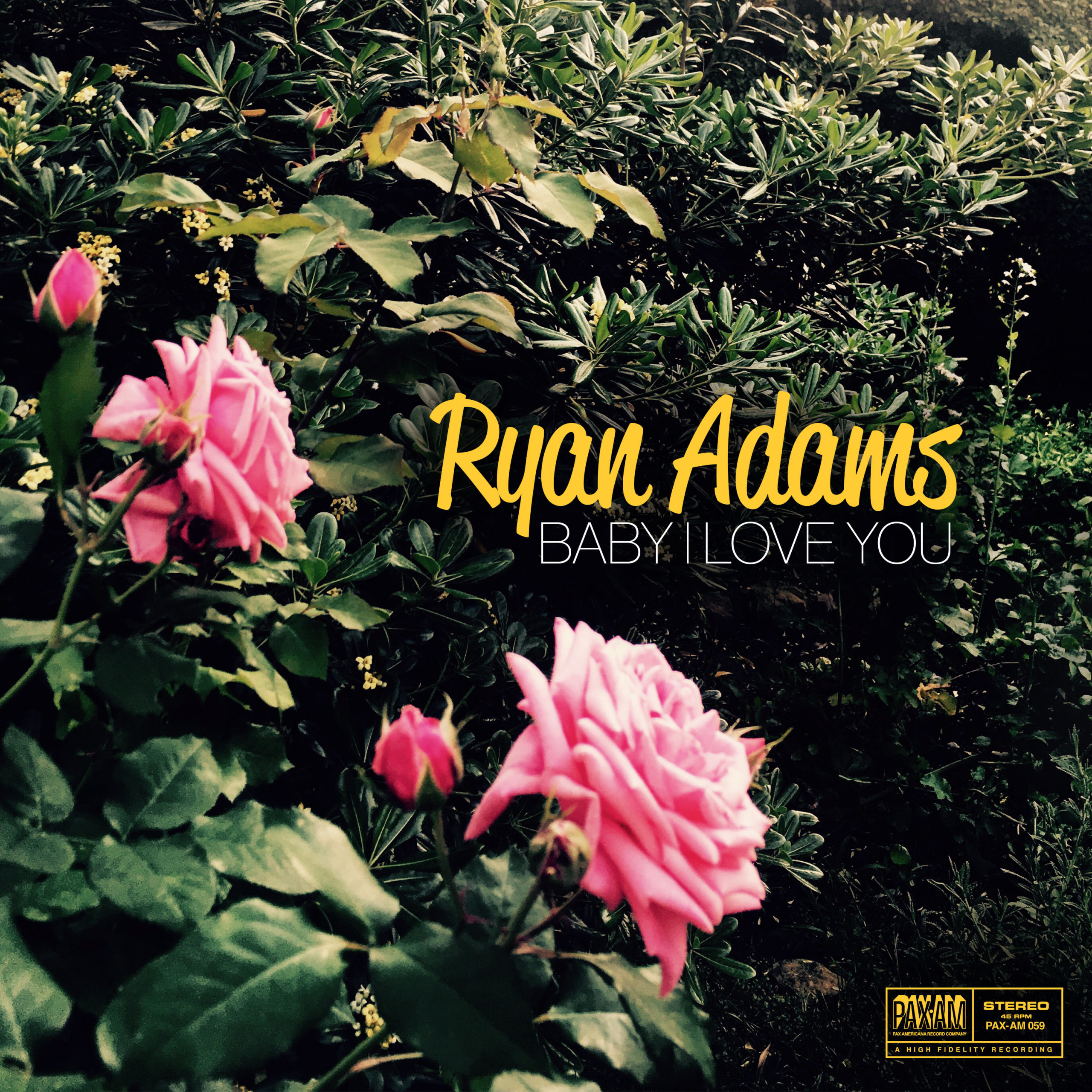 Ryan Adams Baby I Love You single