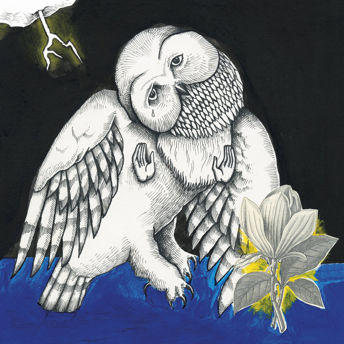 Jason Molina discography Magnolia Electric Co.