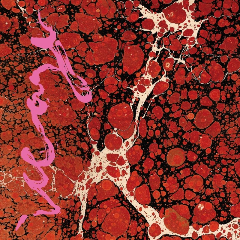 Iceage new album Beyondless