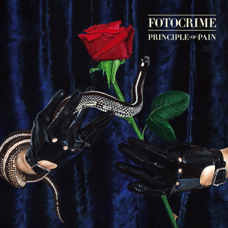 Fotocrime Principle of Pain review