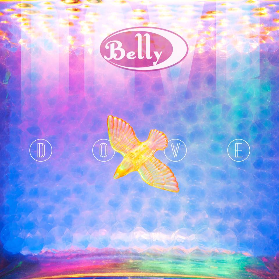 Belly Dove review