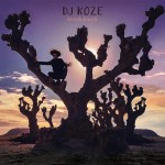 DJ Koze Knock Knock review