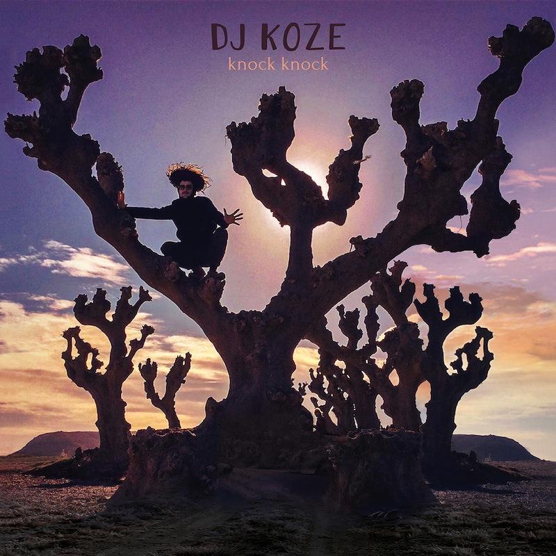 DJ Koze Knock Knock review