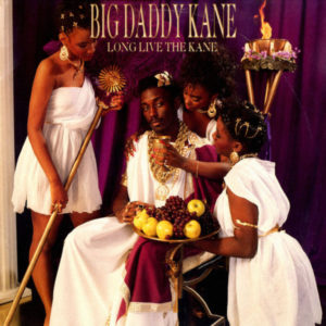 best hip-hop albums of 1988 Big Daddy Kane