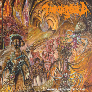 Tomb Mold Manor of Infinite Forms review