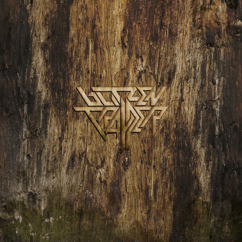 Blitzen Trapper Furr Deluxe reissue