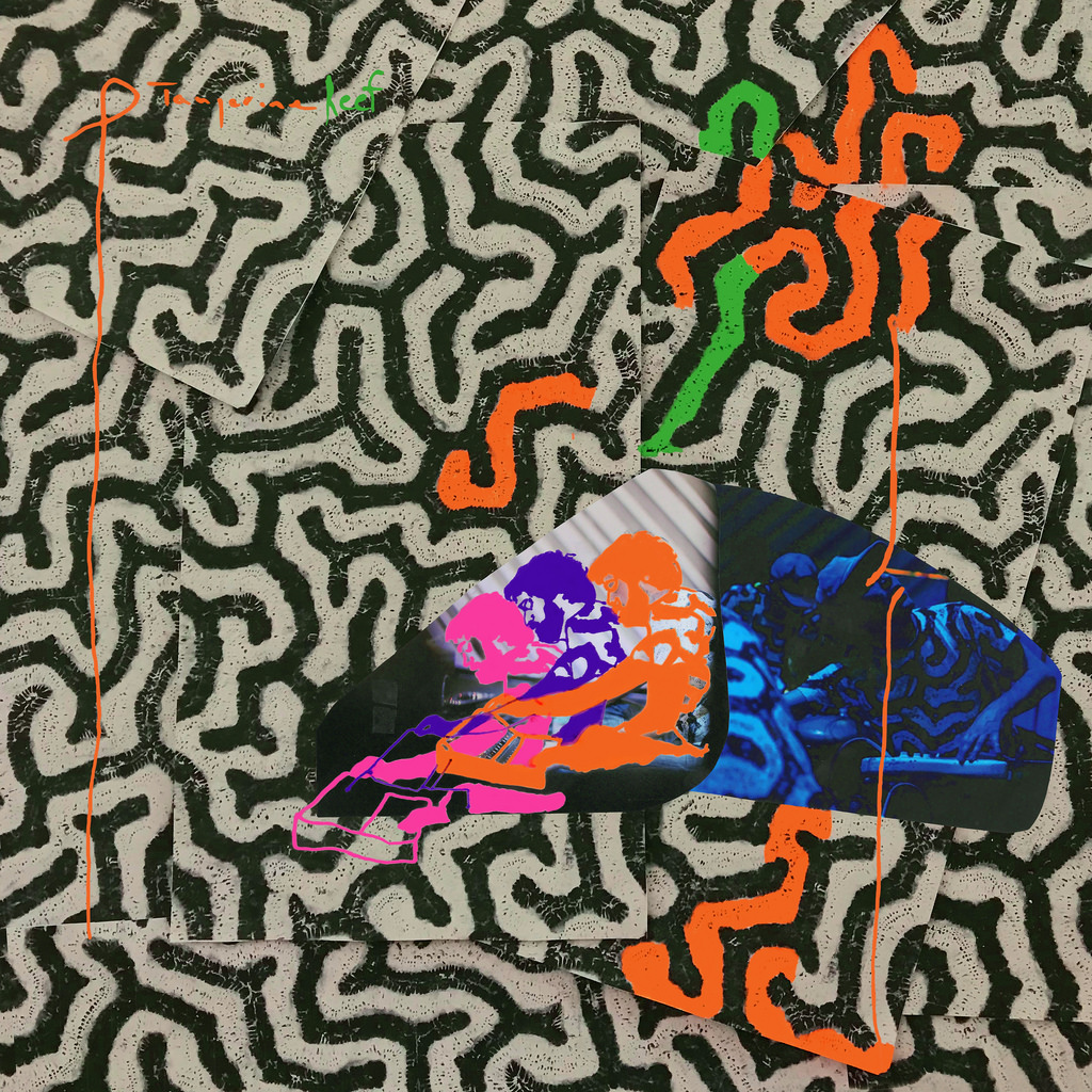 Animal Collective new album details Tangerine Reef