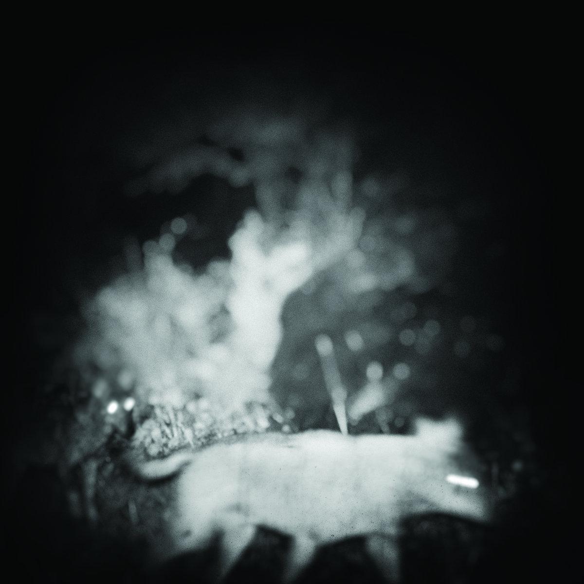Bliss Signal Drift EP review