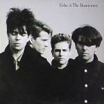 Echo and the Bunnymen review