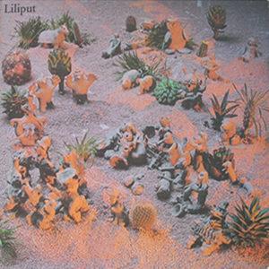 best post-punk albums Liliput