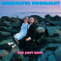 best post-punk albums Soft Boys